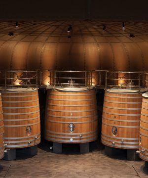 Oenologie dans la Rioja