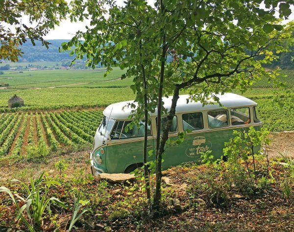 Expérience oenologique en Bourgogne