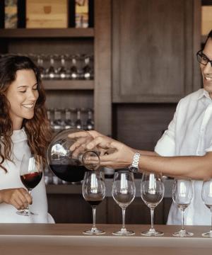 Votre expérience oenologique dans vallée du Douro